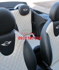 BMW Mini Cbr. 600x600 1
